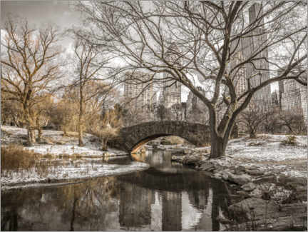 Premiumposter  Central Park New York in winter - Assaf Frank