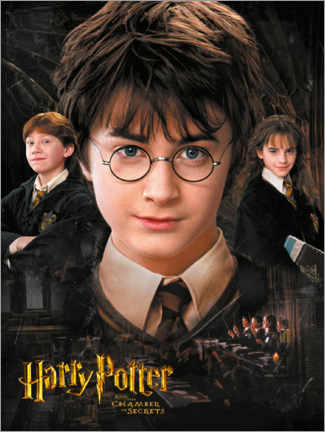 PVC-tavla  Harry Potter and the Chamber of Secrets