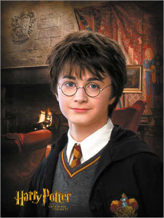 Premiumposter Harry Potter and the Chamber of Secrets