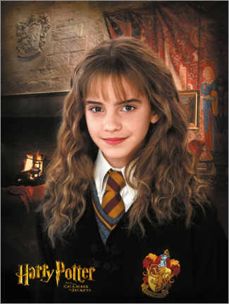 Premiumposter  Hermione and the Chamber of Secrets
