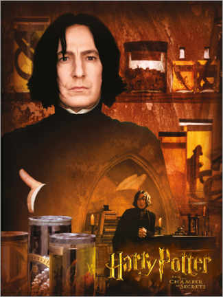 Premiumposter Severus Snape and the Chamber of Secrets