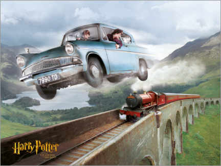 Premiumposter  Harry and Ron - The Chamber of Secrets