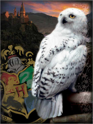 Akrylglastavla  The Half-Blood Prince - Hedwig