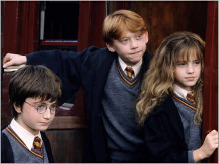 Premiumposter  Harry Potter and the Sorcerer's Stone - Sorcerer's apprentices
