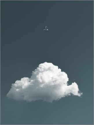 Canvastavla  Bird and cloud - Lukas Saalfrank