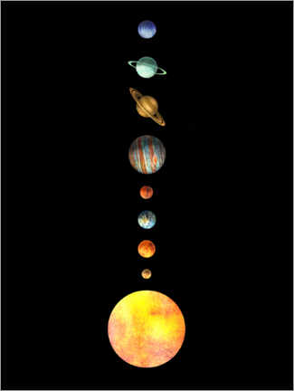 Premiumposter  The Solar System - Terry Fan