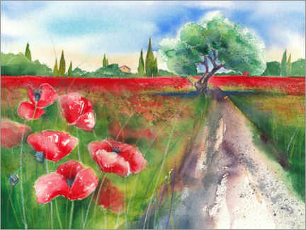 PVC-tavla  Poppy field in Tuscany - Jitka Krause