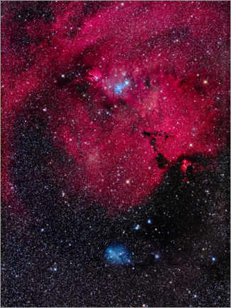 Premiumposter Cone Nebula and Christmas Tree Cluster of Monoceros