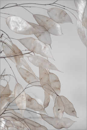 PVC-tavla  Abstract branches - collection from the forest in beige & white - Studio Nahili