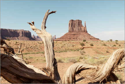 Premiumposter American West - Monument Valley V