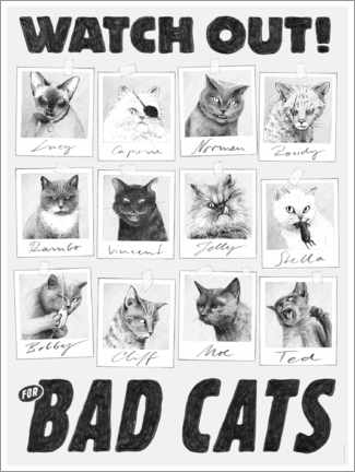 Premiumposter  Watch out for bad cats - Janta Island