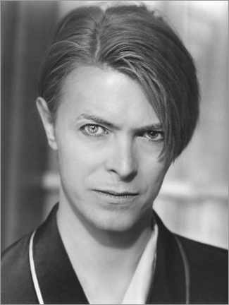 Canvastavla  David Bowie, The Hunger, 1983