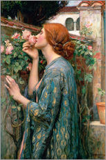 Självhäftande poster  The Soul of the Rose - John William Waterhouse