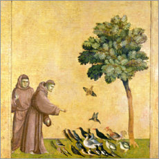 Canvastavla  St. Francis of Assisi preaching to the birds - Giotto di Bondone