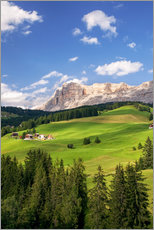 Galleritryck  Green valley in South Tyrol - Matteo Colombo