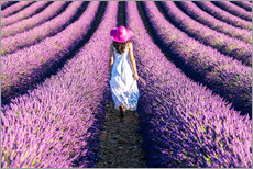 Galleritryck  Girl in a lavender field - Matteo Colombo