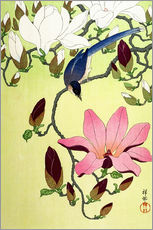 Galleritryck  Magpie with Pink and White Magnolia Blossoms - Ohara Koson
