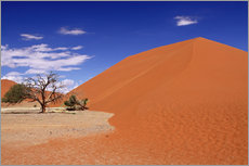Galleritryck  Dunes of the Namib, Namibia - wiw