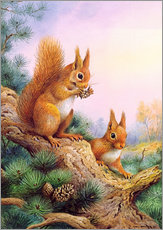 Galleritryck  Pair of Red Squirrels on a Scottish Pine - Carl Donner