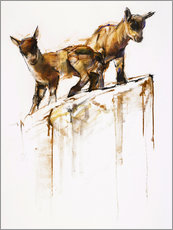 Galleritryck  Little goats - Mark Adlington