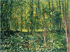 Galleritryck  Trees and Undergrowth - Vincent van Gogh
