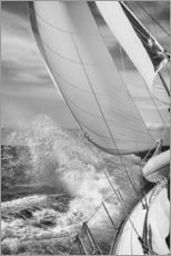 Galleritryck  Sailing black / white - Jan Schuler