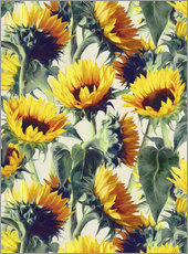 Galleritryck  Sunflowers forever - Micklyn Le Feuvre