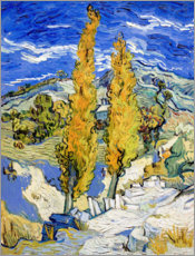Akrylglastavla  Two Poplars on a Hill - Vincent van Gogh