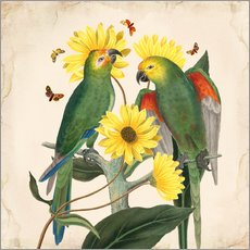 Galleritryck  Oh My Parrot II - Mandy Reinmuth