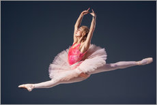 Galleritryck  pink tutu and pointe shoes