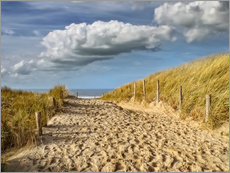 Galleritryck  Through the dunes to the beach - Peter Roder