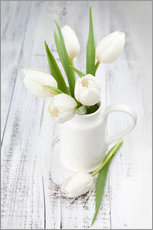 Galleritryck  White tulips on whitewashed wood