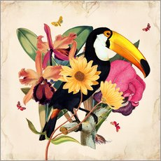 Galleritryck  Oh My Parrot XII - Mandy Reinmuth