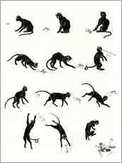 Galleritryck  The cat and the frog - Théophile-Alexandre Steinlen