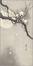 Självhäftande poster  Plum Blossoms at Night - Ohara Koson