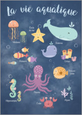 Canvastavla  Life underwater - French - Kidz Collection