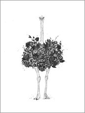 Galleritryck  Ostrich of flowers - Balazs Solti