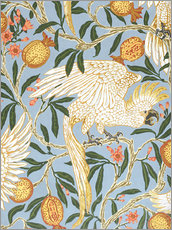 Självhäftande poster  Cockatoo and Pomegranate - Walter Crane