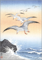 Självhäftande poster Five seagulls over stormy sea