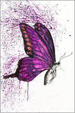 Poster  Song of a Butterfly - Ashvin Harrison