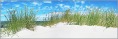 Akrylglastavla  Panorama of Dunes, Baltic Sea - Art Couture