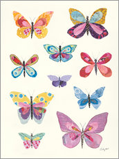 Premiumposter Butterfly Charts II