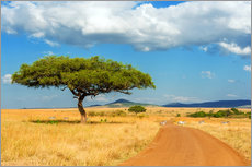 Premiumposter A lonely tree in Africa
