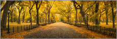 Premiumposter  Central Park in New York City, USA - Jan Christopher Becke