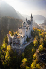 Premiumposter  Neuschwanstein Castle in autumn - Dennis Fischer