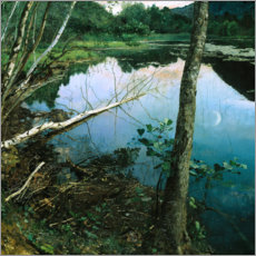 Premiumposter  Summer night - Eilif Peterssen