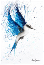 Premiumposter Aussie Blue Bird