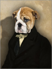 Premiumposter Frenchie with coat