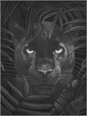 Poster Black panther in the jungle