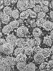 Premiumposter Blooming garden in black and white